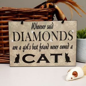 never owned a cat lovers plaque