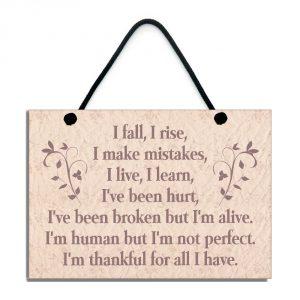 I Fall I Rise I Make Mistakes