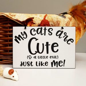 funny cat plaque my cats are cute