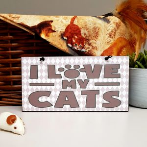 cat lovers gift i love my cats