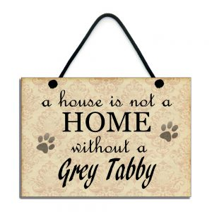 a house is not a home without a grey tabby